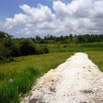 Land for sale in Canggu Bali - LCG075