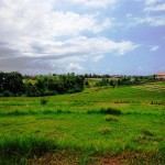 Land for sale in canggu Bali - LCG076