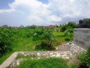 Land for sale in canggu Bali - LCG078