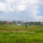 Land for sale in canggu Bali - LCG078