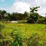 Land in jimbaran bali LJI020