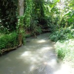 Land for sale in Tabanan Bali LTB016