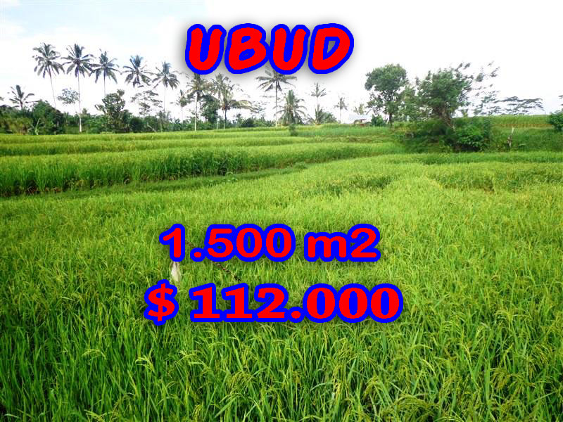 property for sale in Ubud