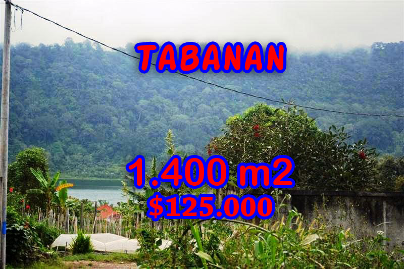 Property-for-sale-in-Tabanan-land