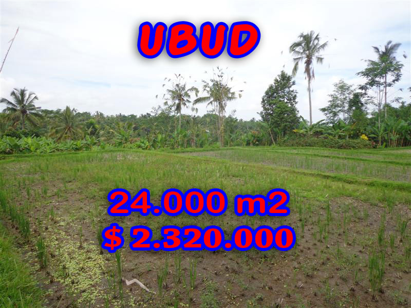 -Land-for-sale-in-Ubud