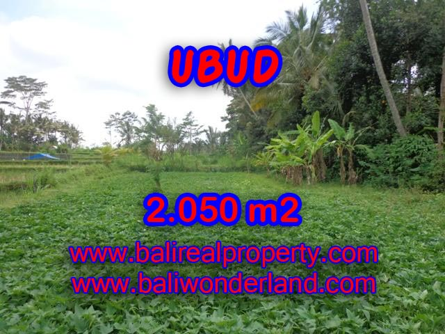 Land in Ubud Bali for sale, Exotic view in Ubud Pejeng – TJUB344