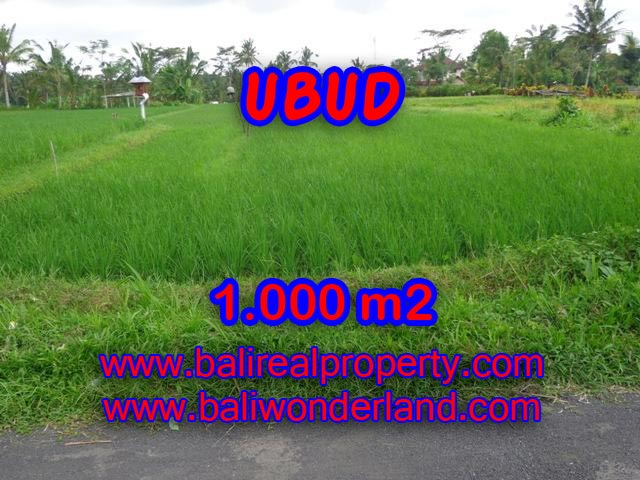 Land in Ubud for sale, Attractive view in Ubud Tampak siring Bali – TJUB345