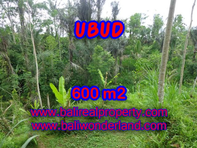 Fantastic Land for sale in Ubud Bali, paddy field view in Ubud Tegalalang – TJUB346