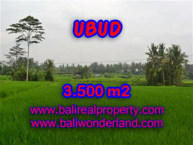 Extraordinary Land for sale in Ubud Bali, rice fields and mountain view in Ubud Pejeng– TJUB361