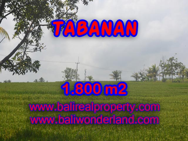 LAND FOR SALE IN TABANAN, Wonderful view in SOKA TABANAN Bali – TJTB083