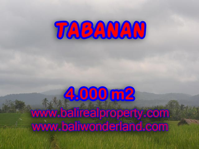 Land in Tabanan Bali for sale, Incredible view in TABANAN BARAT – TJTB084