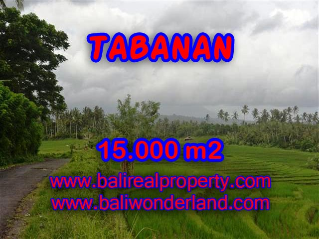 Land in Bali for sale, great view in Tabanan Bali – TJTB094
