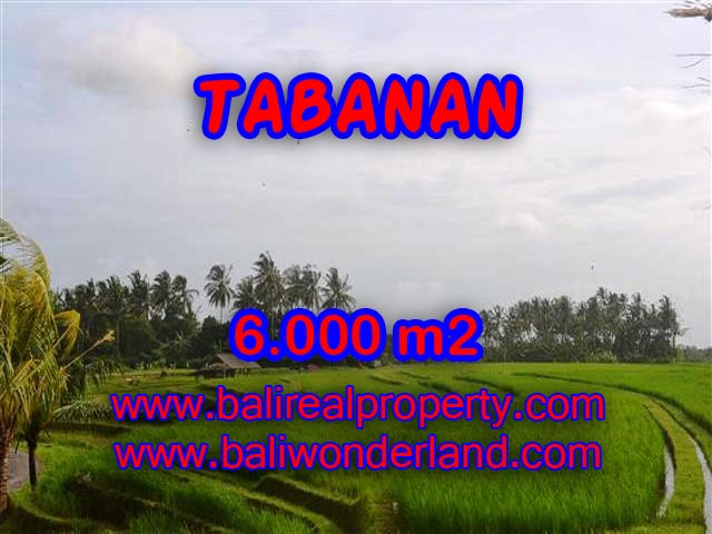 Land for sale in Bali, wonderful view in Tabanan Bali – TJTB093