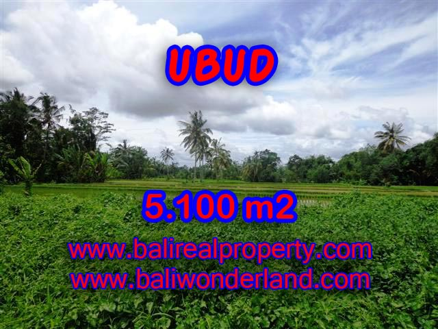 Fantastic Property for sale in Bali, land sale in Ubud Bali – TJUB368