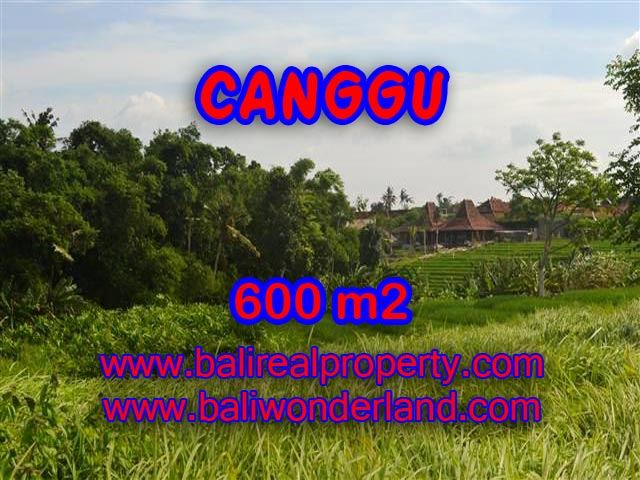 Land for sale in Bali, Fantastic view in Canggu – TJCG130