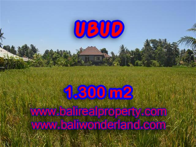 Land in Ubud for sale, Amazing view in Ubud Center Bali – TJUB386