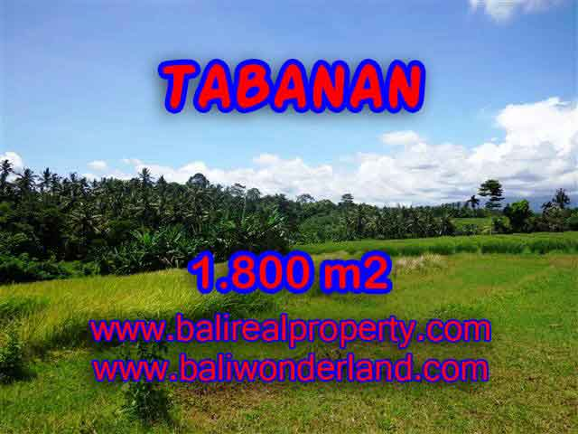 Property sale in Bali, Beautiful land in Tabanan for sale – TJTB106