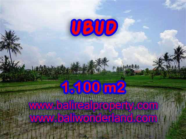 Exceptional Property in Bali, land for sale in Ubud Bali – TJUB376