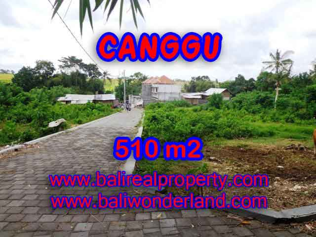 Attractive Property for sale in Bali, land for sale in Canggu – TJCG150