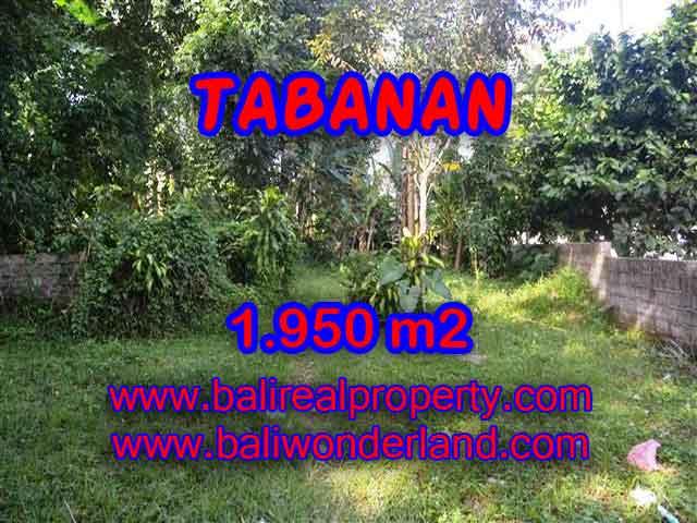 Land in Tabanan for sale, Stunning view in Tabanan Baturiti Bali – TJTB130