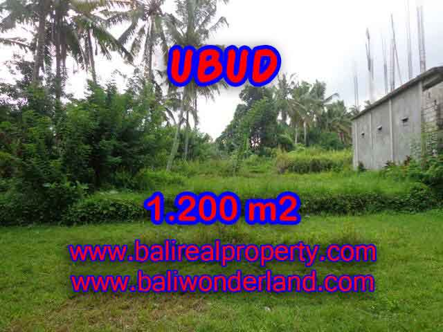Land for sale in Bali, astonishing view in Ubud Center Bali – TJUB399