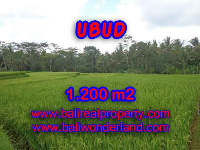 Land in Bali for sale, astounding view in Ubud Bali – TJUB400