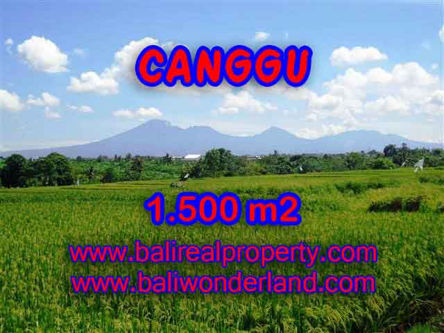 Beautiful Property for sale in Bali, LAND FOR SALE IN CANGGU Bali – TJCG144