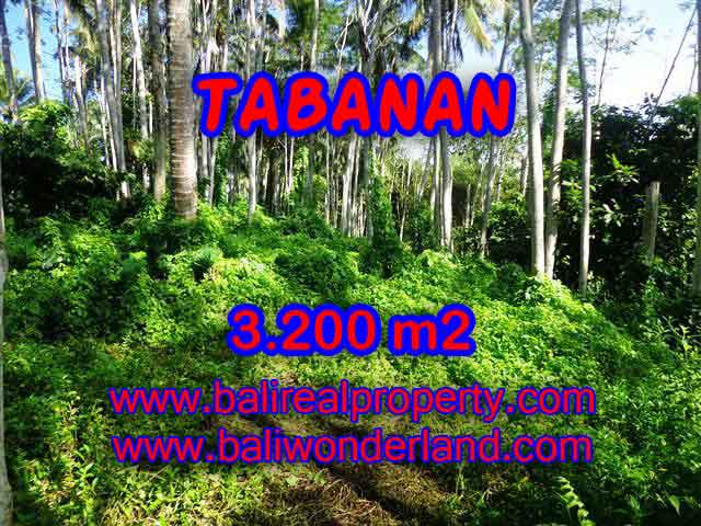 Land in Tabanan for sale, Attractive view in Tabanan Penebel Bali – TJTB120