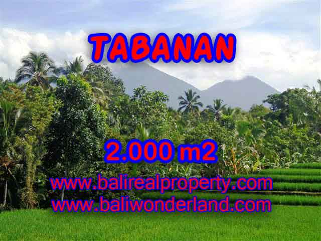 Fantastic Land for sale in Tabanan Bali, Mountain and ricefields and river view in Tabanan Penebel – TJTB121