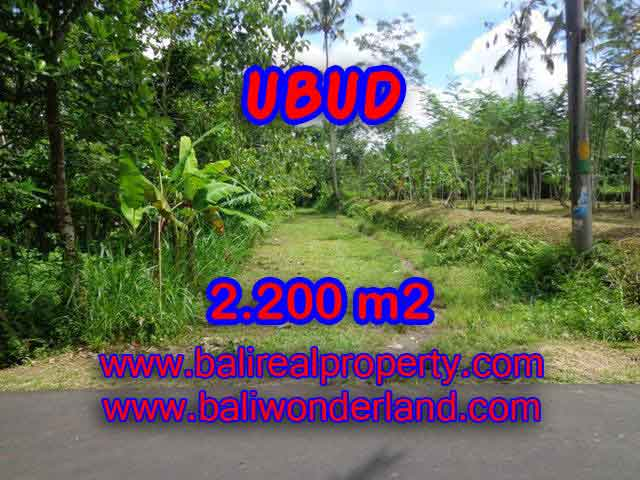 Land for sale in Bali, Fantastic view in Ubud Tegalalang – TJUB408