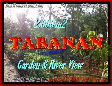 Land in Bali for sale, Stunning view in Tabanan Bali – TJTB149