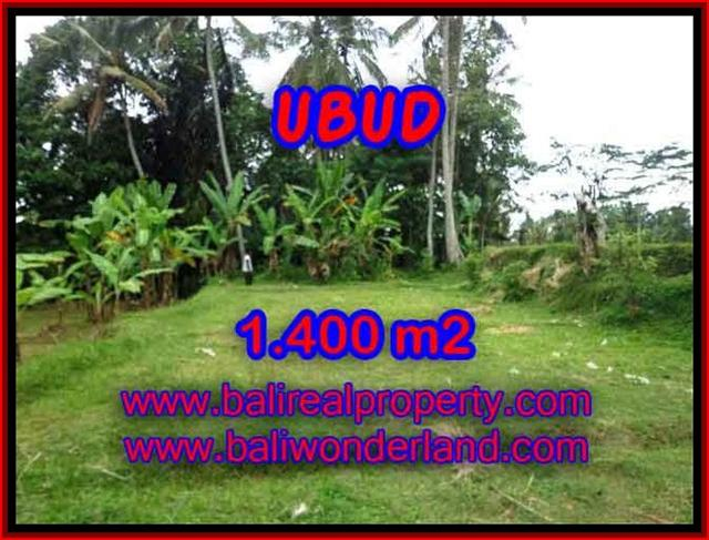 Outstanding Property for sale in Bali, land for sale in Ubud Bali – TJUB419