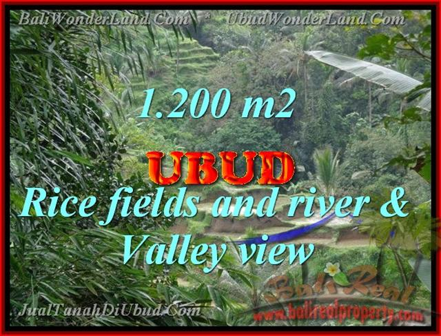Wonderful Property in Bali for sale, land in Ubud Bali for sale – TJUB420