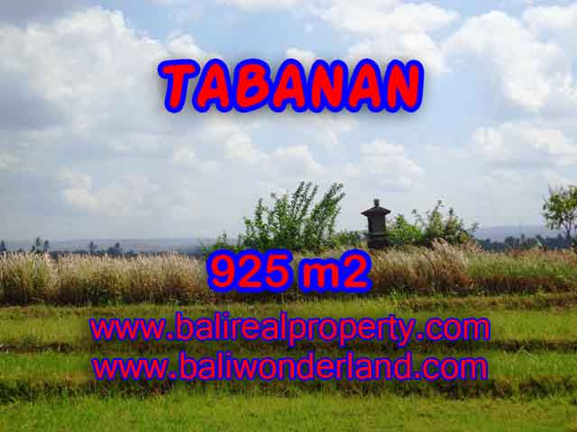 Land in Tabanan for sale, Outstanding view in Tabanan selemadeg Bali – TJTB135