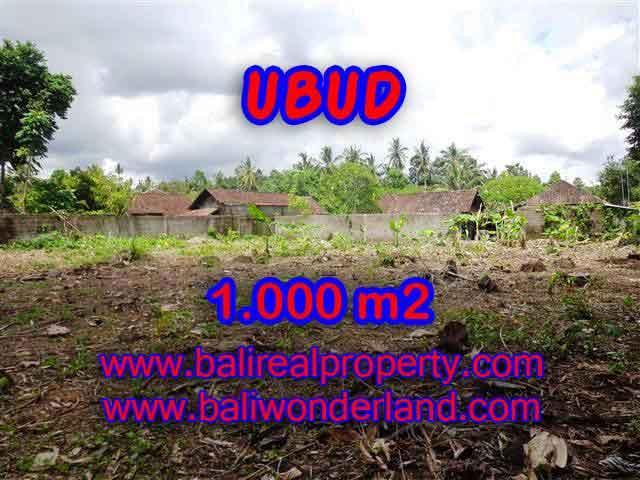 Excellent Property for sale in Bali, land for sale in Ubud Bali – TJUB373