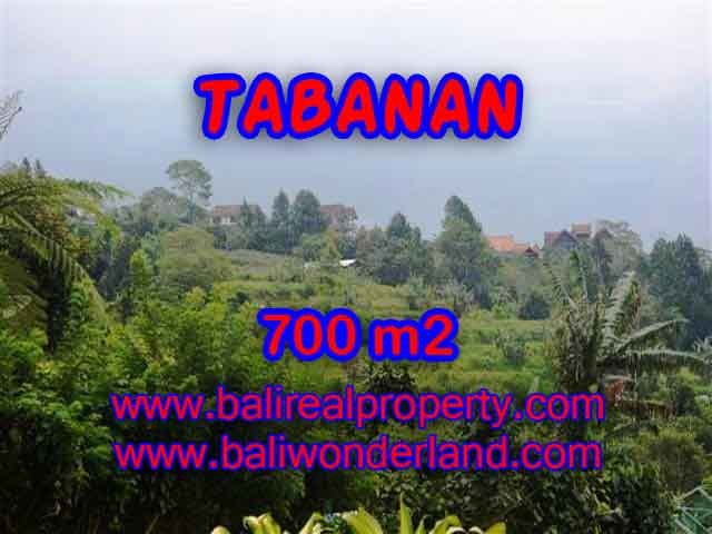 Stunning Property for sale in Bali land sale in Tabanan Bali – TJTB103