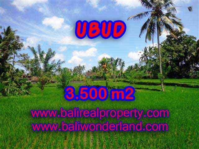 Land for sale in Ubud Bali, Great view in Ubud Tegalalang – TJUB388
