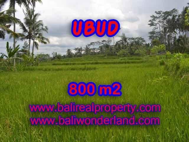 Land for sale in Ubud Bali, Wonderful view in Ubud Pejeng – TJUB393