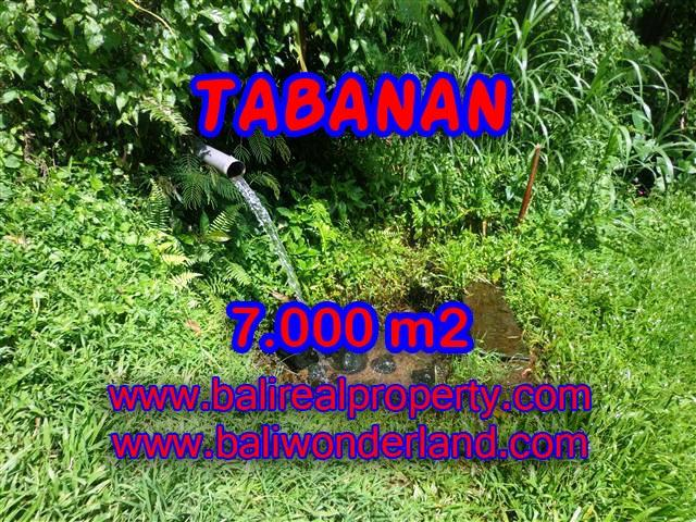 Land in Bali for sale, Stunning view in Tabanan Bali – TJTB089