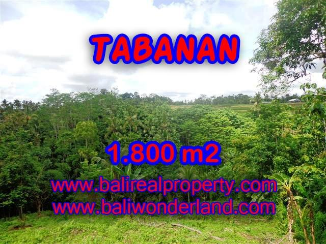 Land for sale in Bali, spectacular view in Tabanan Bali – TJTB088