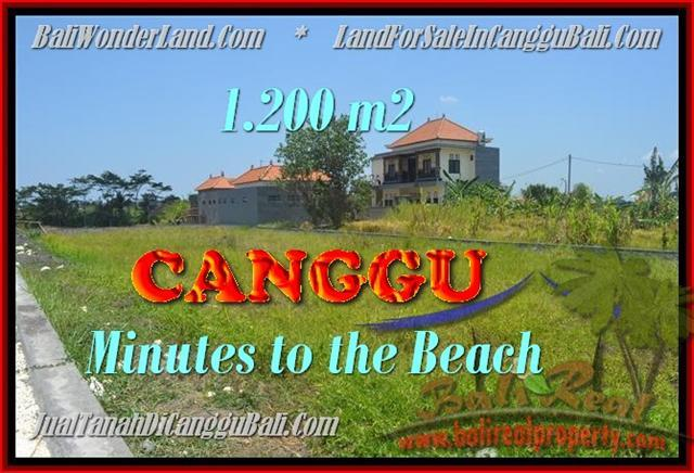 FOR SALE Magnificent LAND IN CANGGU BALI TJCG166