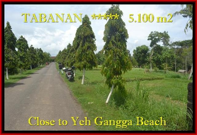 FOR SALE Exotic LAND IN Tabanan yeh Gangga TJTB186