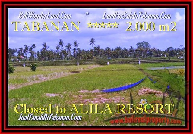 Affordable LAND SALE IN Tabanan yeh Gangga TJTB187