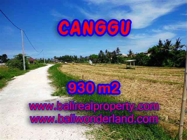FOR SALE Magnificent PROPERTY LAND IN Canggu Pererenan TJCG146