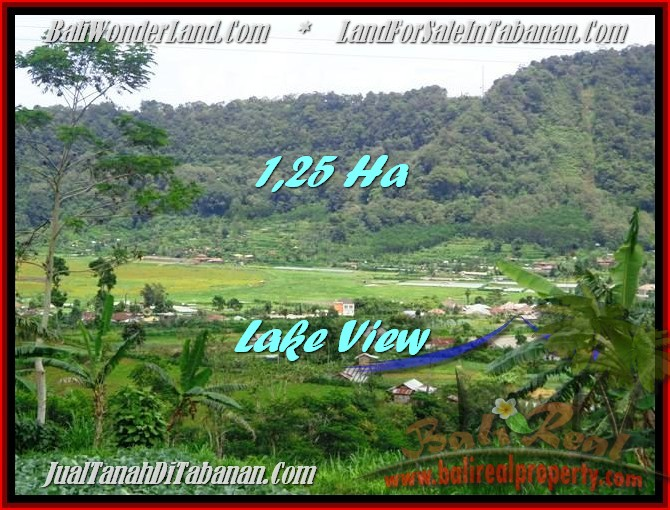 Magnificent Tabanan Bedugul BALI LAND FOR SALE TJTB188