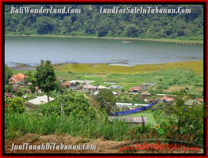 Affordable LAND FOR SALE IN Tabanan Bedugul BALI TJTB189