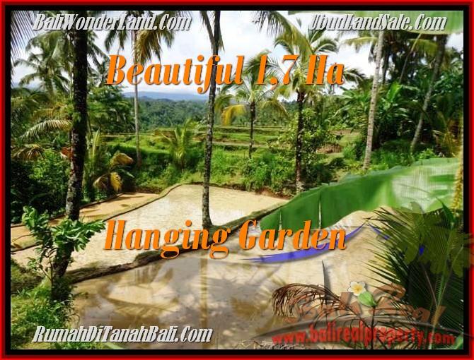 Exotic PROPERTY Ubud Payangan BALI LAND FOR SALE TJUB470