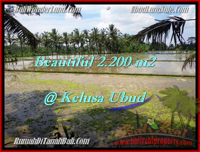 Ubud Payangan LAND FOR SALE TJUB475