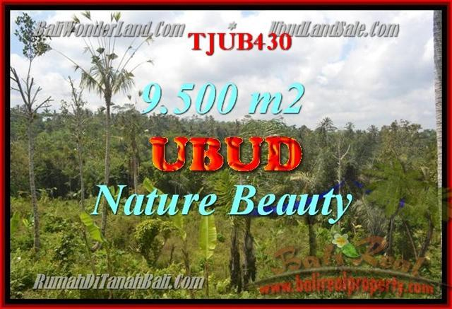 Beautiful PROPERTY UBUD BALI 9,500 m2 LAND FOR SALE TJUB430