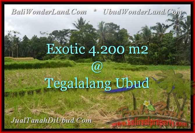 Magnificent UBUD 4,200 m2 LAND FOR SALE TJUB461